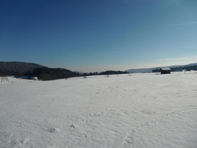 Winterwonderland Fohrenbühl