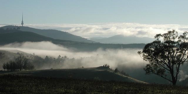 Blick über das Tal Canberras und Black Mountain von stello  https://www.flickr.com/photos/spelio/4423052431/