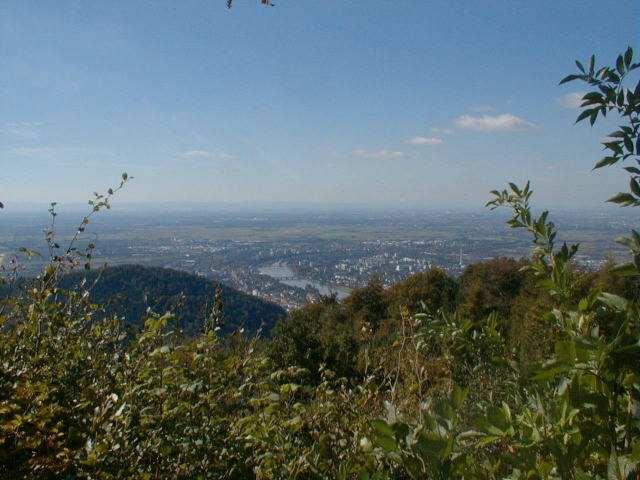 Die Aussicht vom Gipfel des Königstuhls.Region OdenwaldArmin Kübelbeck