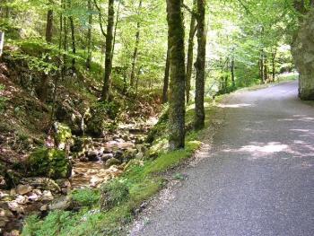 Auf der Westrampe zum Scheltenpass beginnt das erste Steilstück sofort nach Eintritt in die Schlucht.Stefan Moser