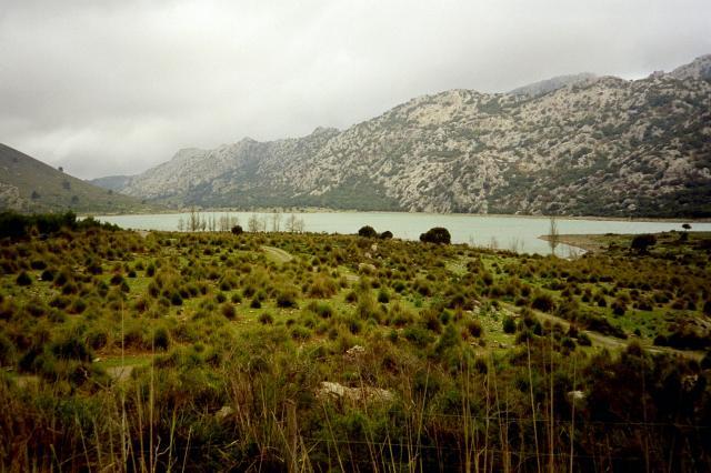 Der zweite Stausee auf der Ostanfahrt zum __(Puig Major) - der P. de Cuber.