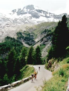 Die Baumgrenze wird erreicht am Stilfser Joch.Tag 2 Sommertour 2001