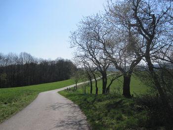 Schmaler Weg durch schöne Landschaft.