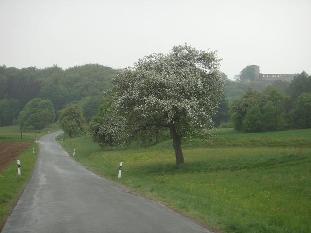 Blick auf Burg und kommendes Steilstück