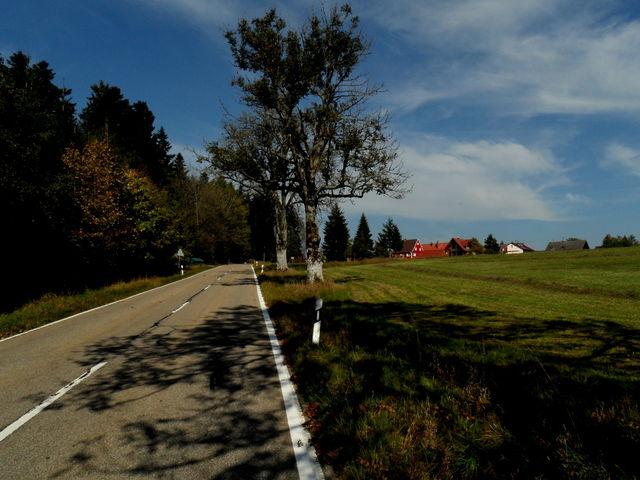 Der Endspurt - noch wenige Meter nach Schömberg