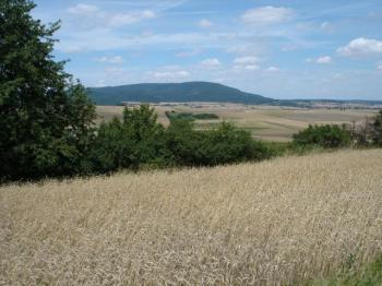 Donnersberg von Süden.