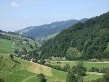 Blick ins Münstertal.