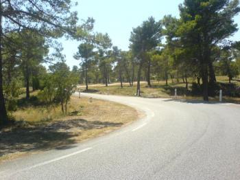 """Naturschutzgebiet """"Foret de Font Blanche"""" am Grand Caunet."""