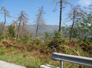 Blick auf den Monte Beigua.