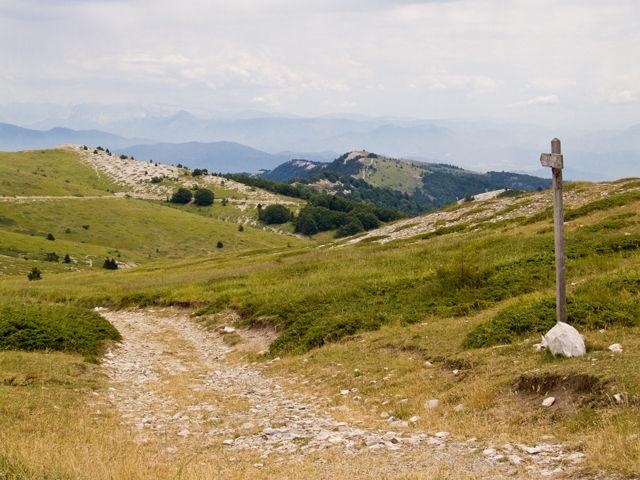 Weite Aussichten über die Haute- Provence