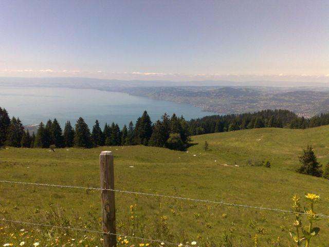 Der Genfer See von Les Agites aus