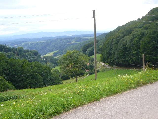Fast geschafft: Sommerlicher Blick ins Rheintal.
