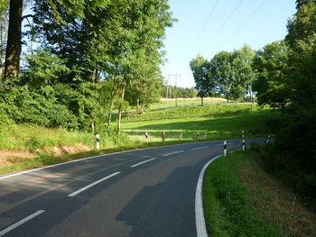 Nienstedter Pass-West 3 Blick auf die Serpentinen.