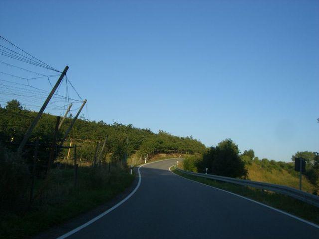 Hopfen und ein steilerer Abschnitt auf halber Strecke