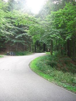 Am Waldrand geht es steil bergauf.
