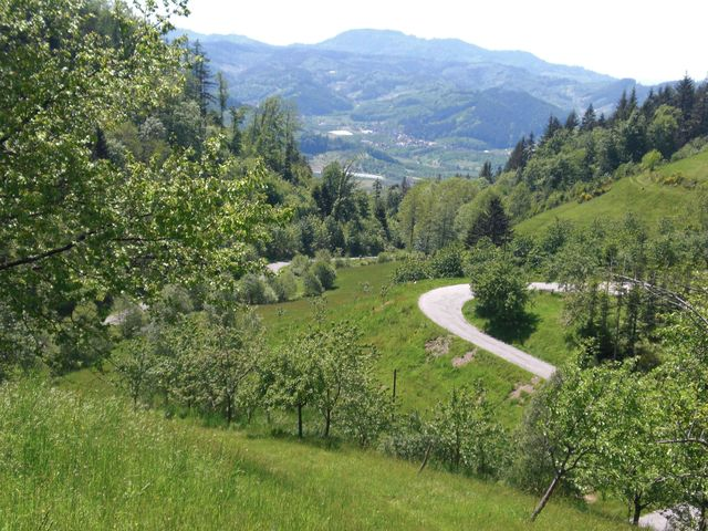 Blick ins Renchtal