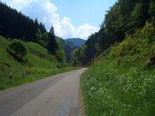 Kaelbelescheuer locker in das Tal hinein.