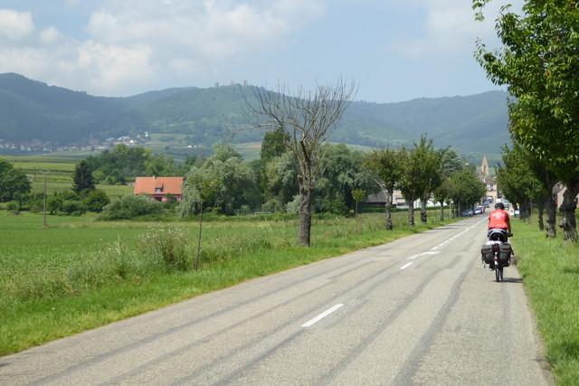 Eguisheim 3 Exen