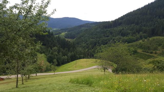 Auffahrt von Vorderbästenbach