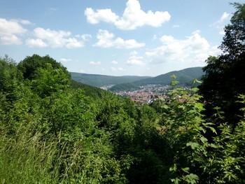 toller Ausblick auf Eberbach im Neckartal