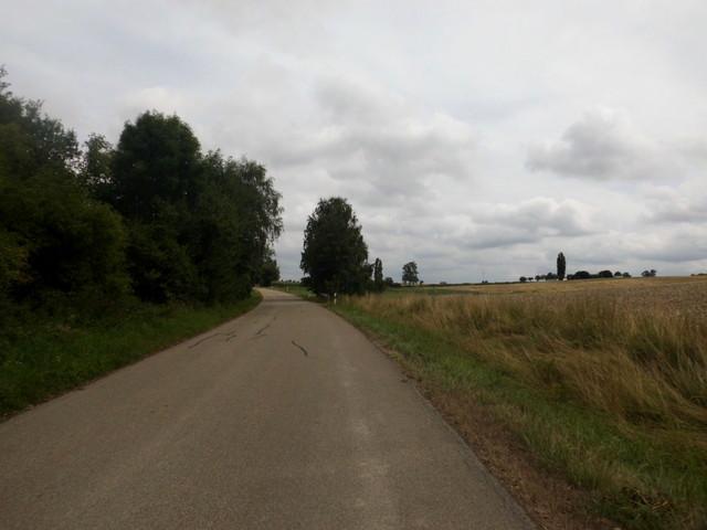 und durch die Felder...
