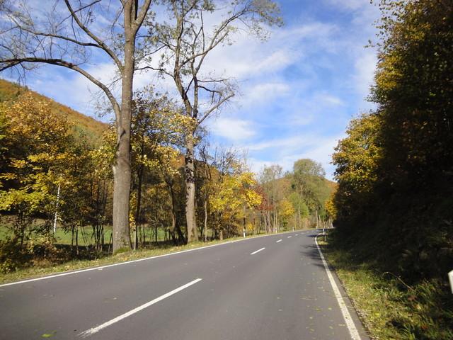 Südauffahrt hinter Schleusingerneundorf. Im Herbst kann man glatt noch ein, zwei Schönheitssterne mehr vergeben.