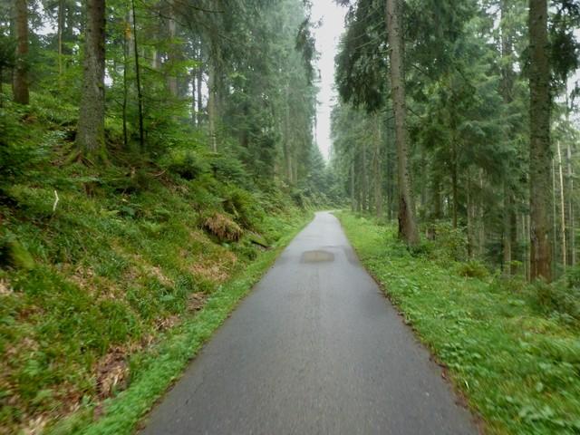 Kniebis Nordanfahrt