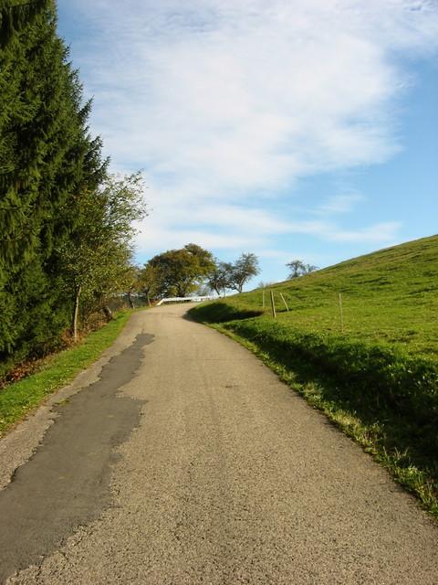 Nur noch wenige Meter bis Steinbach.