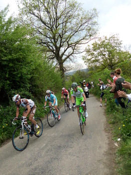 Amstel Gold Race 2014 Kopgroep