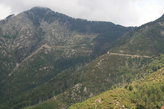 Anfahrt von Vivario: Blick auf die spektakulären Kehren kurz vor der Passhöhe.