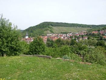 Blick auf die Weinsteige vom gegenüberliegenden Weinberg nördlich des Kocher...