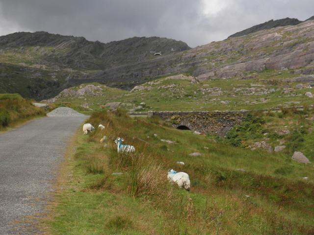 Blick von der Südseite zur Passhöhe