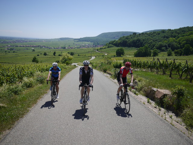 Training Weekend in the Vosges (May Bank Holiday) - from  30th May to 2nd June 2019