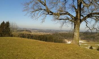 Befahrung Eintragen Kögelegg 713 M Südauffahrt Von Gießen
