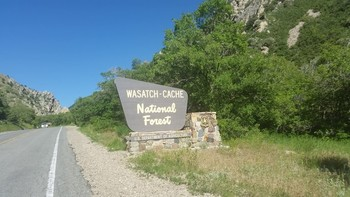 Wasatch-Cache National Forest.