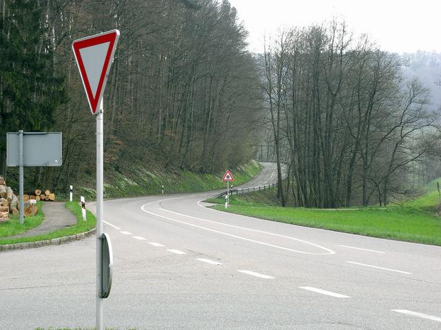 Birkenweißbuch 02. Im Hintergrund erkennt man deutlich die beginnende Steigung.