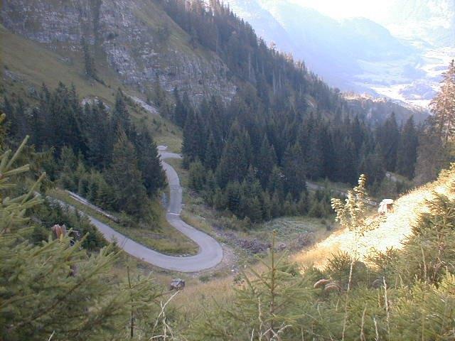 Im Anstieg zur Hirschalpe nach der Abzweigung von der OberjochstraßeArmin Kübelbeck