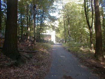 Der Gipfel des Krehbergs - hier geht es nicht mehr weiter. Region OdenwaldArmin Kübelbeck