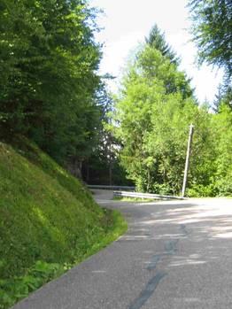 Im unteren Stück verläuft die Straße überwiegend im Wald.