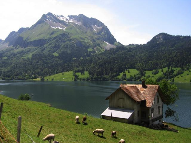 Der Wägitaler See.