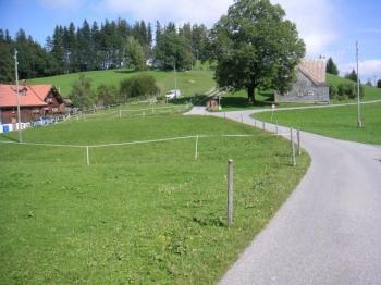 Hier mündet die Auffahrt über Langenegg von links ein. Nach halbrechts fahren wir weiter in Richtung St. Anton.