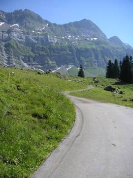 Die letzten steilen Meter, bevor es vor dem Berg quer durch geht.