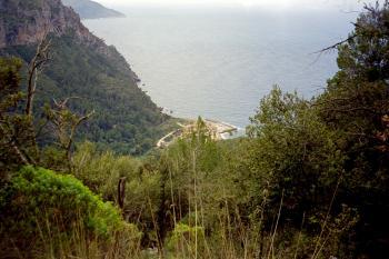 Unten am Meer liegt __[Port de Valldemossa|243] in einem tiefen Felseinschnitt.