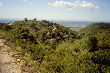 Die Straße zum __[Puig de Randa|244] noch einmal näher.