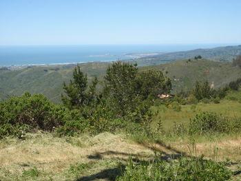 Blick vom Skyline Boulevard zum Pazifik