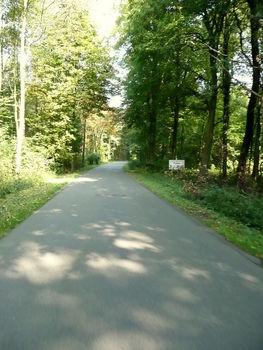 1. Dellbrück nach Schildgen