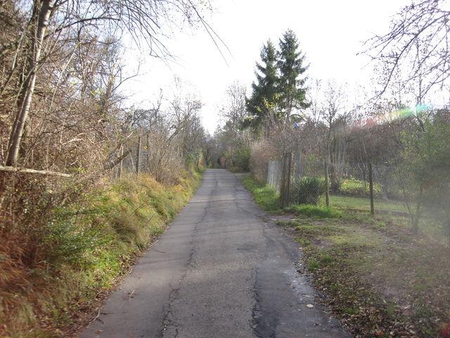 Steiler Weg durch die Schrebergärten.