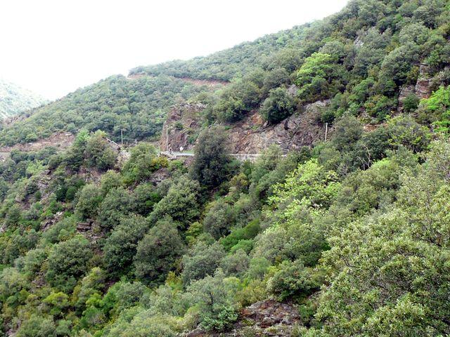 Auffahrt zum Col de Palomère vin Vinca