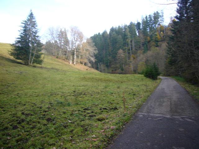Oberer Teil des Nonnenbachtals