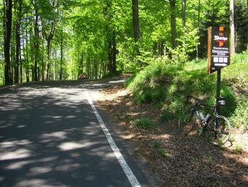 Pässhöhe Dreiherrenstein, wer noch ein paar Meter höher hinaus will, kann dem geschotterten Fahrweg bis zum Gasthaus folgen.